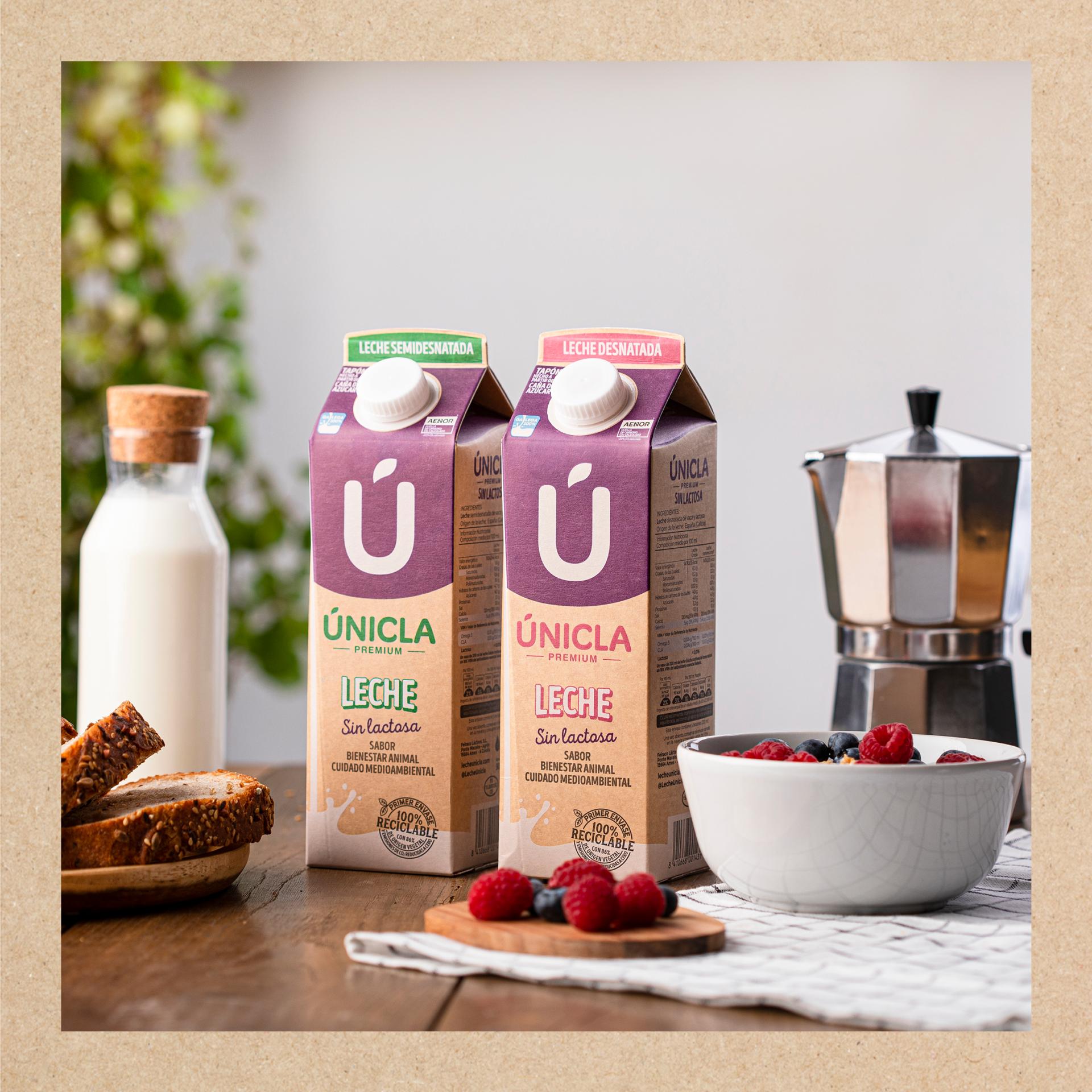 Imagen de dos brick de leche para intolerantes a la lactosa